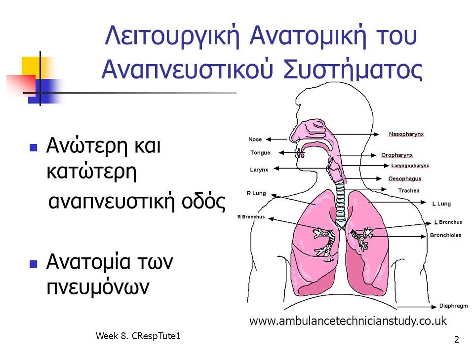 Λειτουργική Ανατομική του Αναπνευστικού Συστήματος