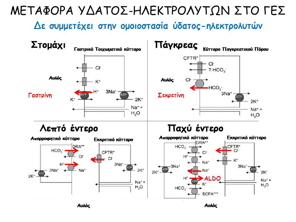 ΜΕΤΑΦΟΡΑ ΥΔΑΤΟΣ-ΗΛΕΚΤΡΟΛΥΤΩΝ ΣΤΟ ΓΕΣ