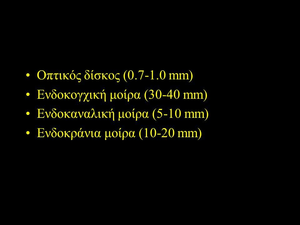 Οπτικό νεύρο Οπτικός δίσκος (0.7-1.0 mm) Ενδοκογχική μοίρα (30-40 mm)