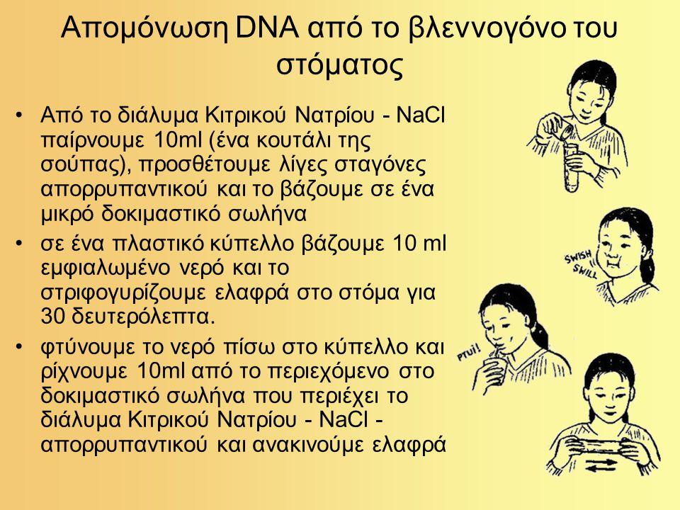Απομόνωση DNA από το βλεννογόνο του στόματος