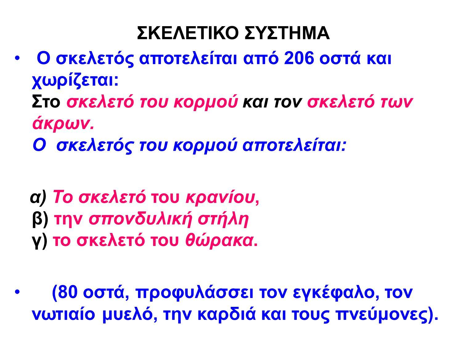 ΣΚΕΛΕΤΙΚΟ ΣΥΣΤΗΜΑ