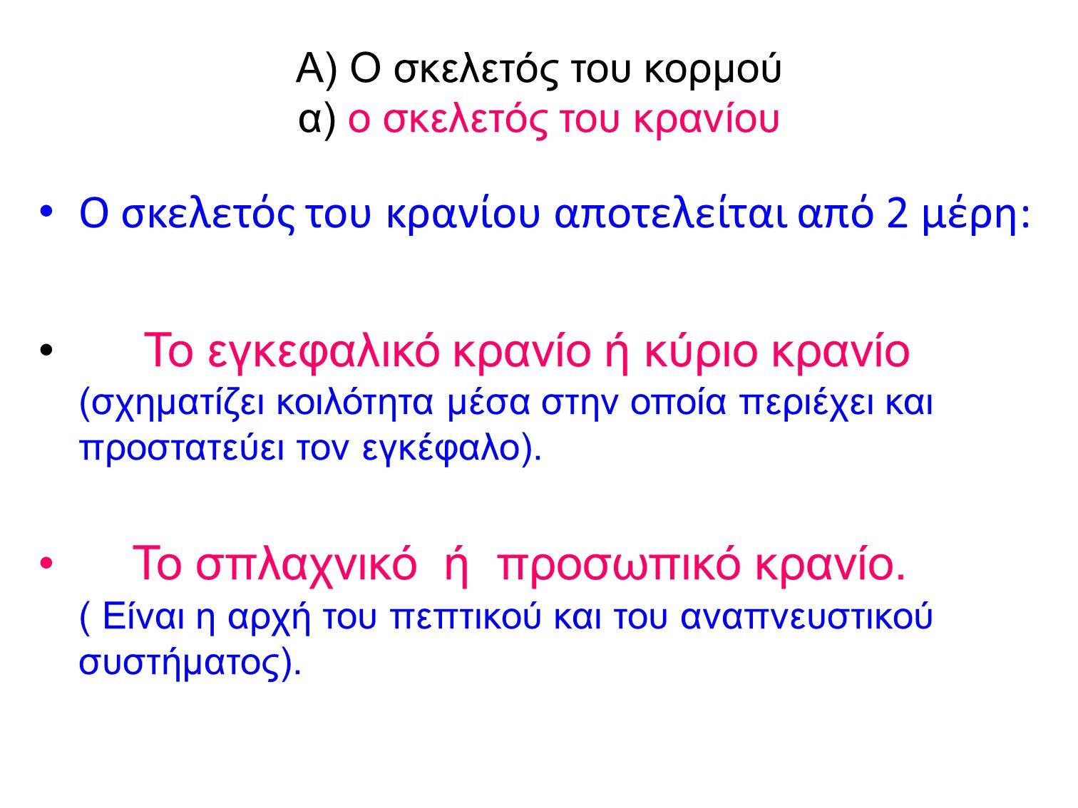 Α) Ο σκελετός του κορμού α) ο σκελετός του κρανίου