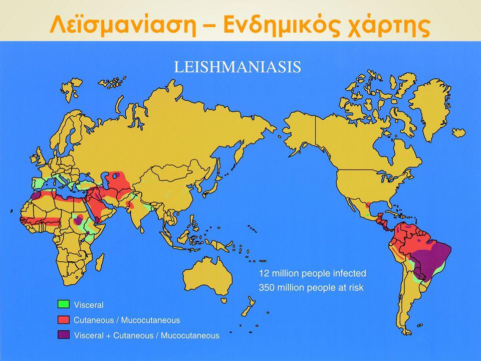 Λεϊσμανίαση – Ενδημικός χάρτης