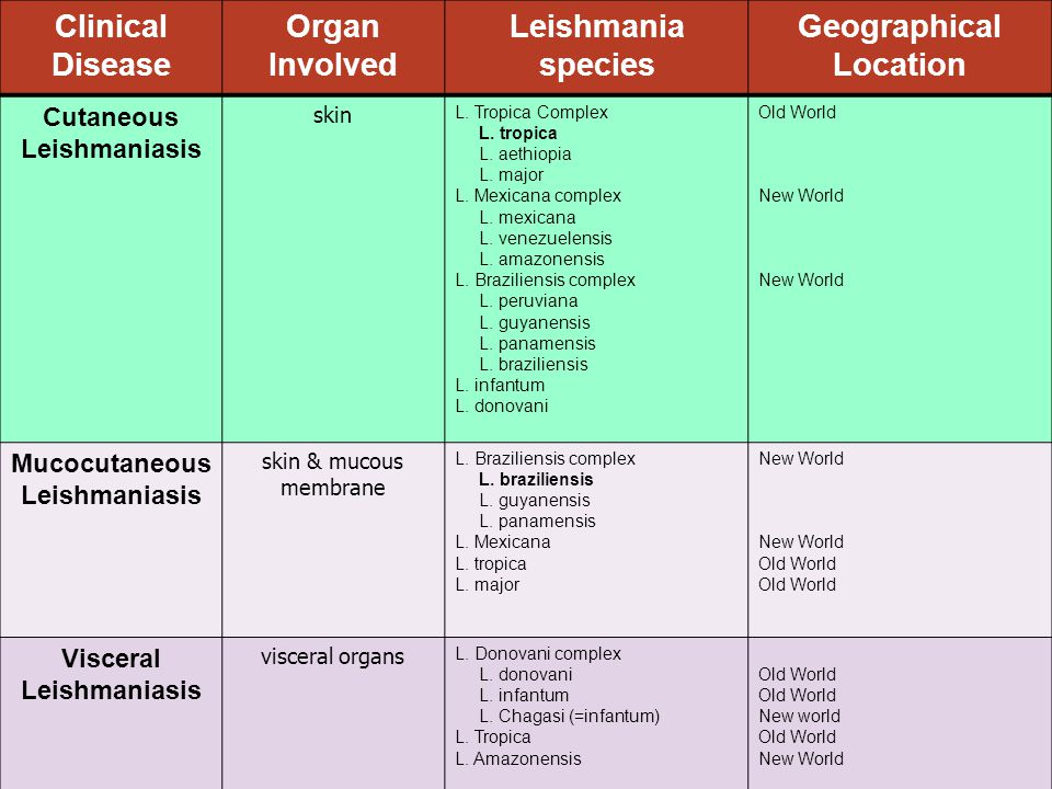 Geographical Location Visceral Leishmaniasis