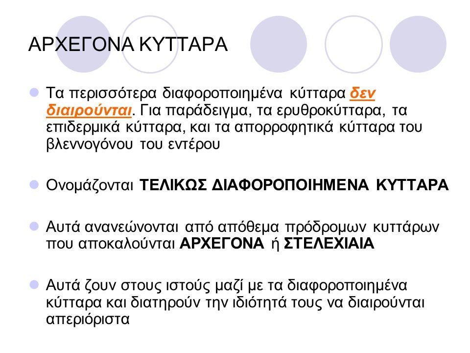 ΑΡΧΕΓΟΝΑ ΚΥΤΤΑΡΑ