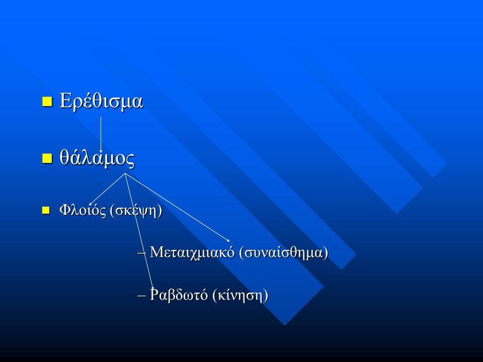 Ερέθισμα θάλαμος Φλοιός (σκέψη) Μεταιχμιακό (συναίσθημα)