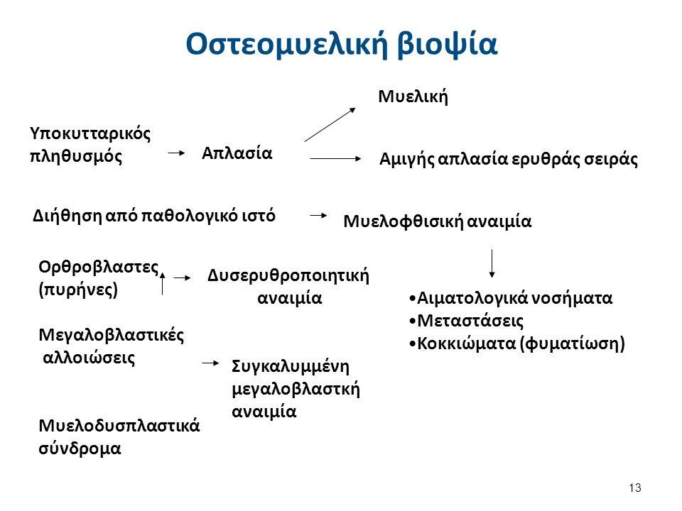 Μακροκυτταρική Αναιμία (MCV > 100fl)
