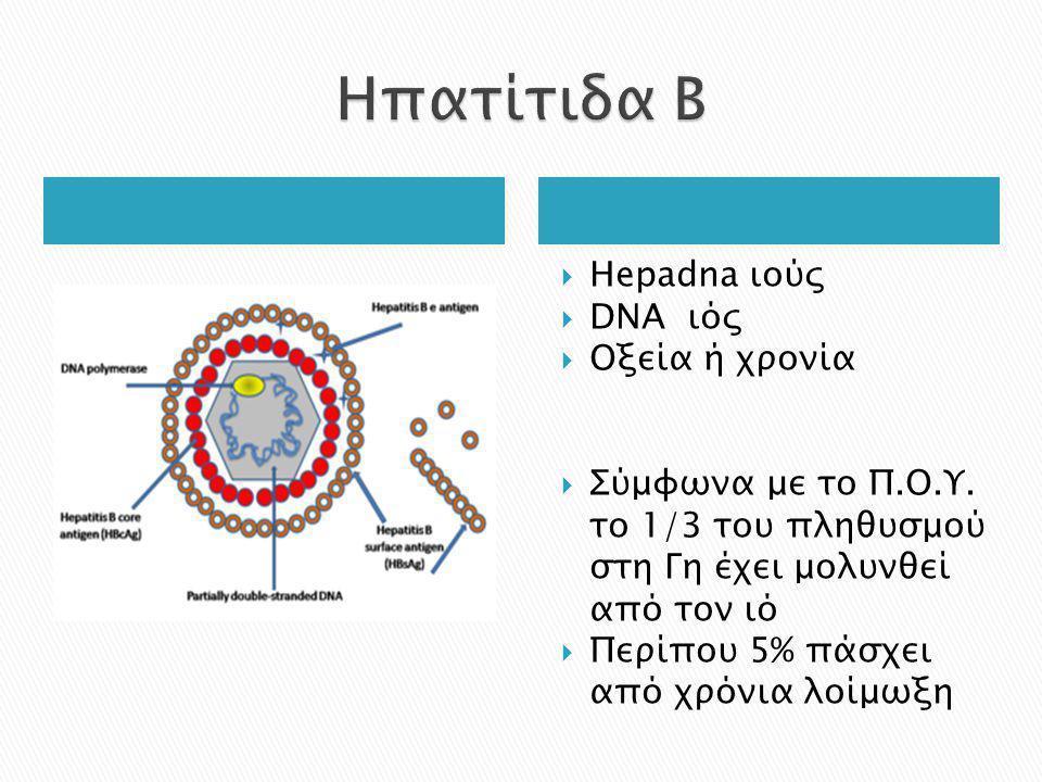 Ηπατίτιδα Β Hepadna ιούς DNA ιός Οξεία ή χρονία