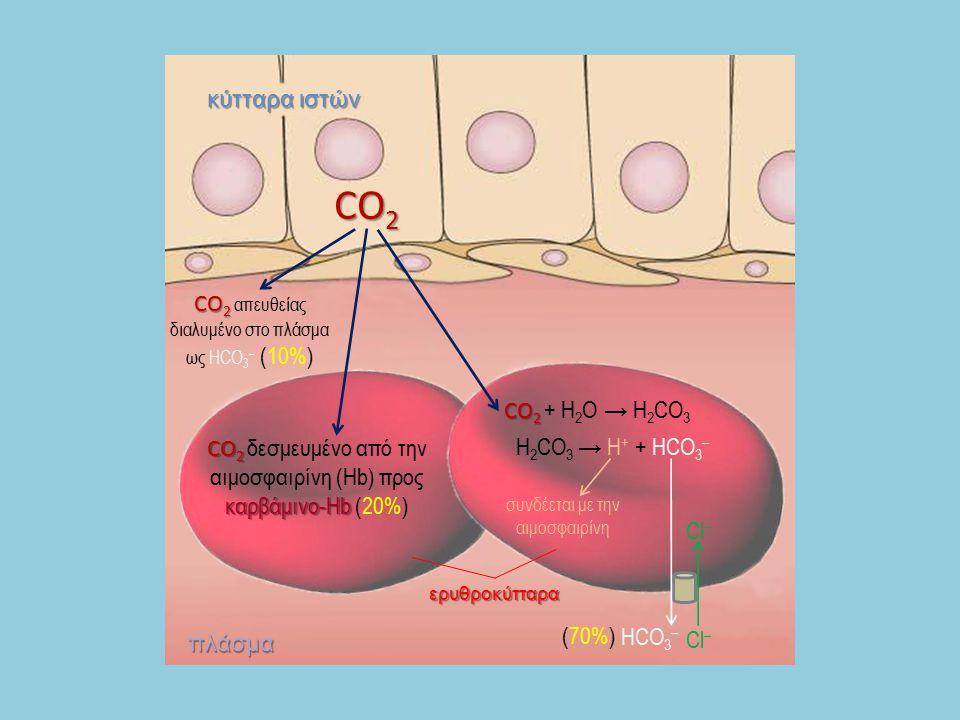 CO2 κύτταρα ιστών CO2 απευθείας διαλυμένο στο πλάσμα ως HCO3– (10%)