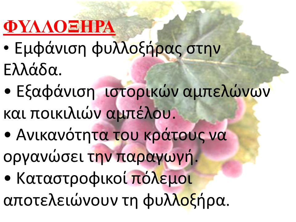 ΦΥΛΛΟΞΗΡΑ Εμφάνιση φυλλοξήρας στην Ελλάδα. Εξαφάνιση ιστορικών αμπελώνων και ποικιλιών αμπέλου. Ανικανότητα του κράτους να οργανώσει την παραγωγή.