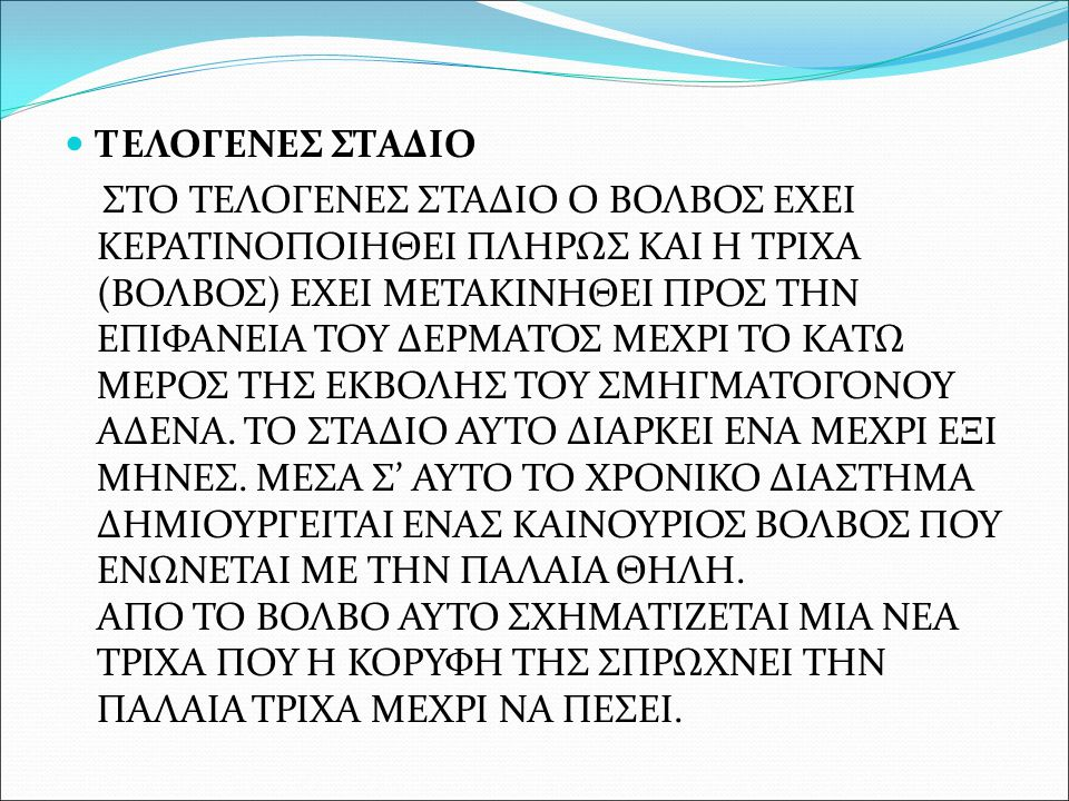 ΤΕΛΟΓΕΝΕΣ ΣΤΑΔΙΟ