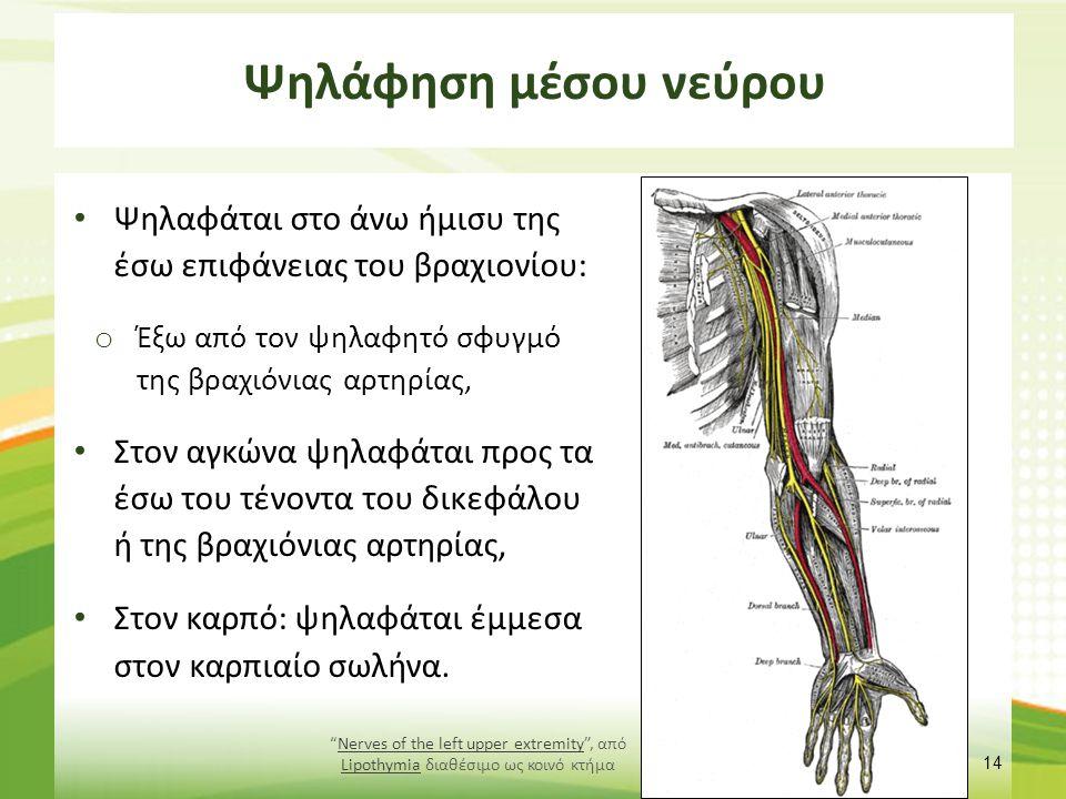 Ψηλάφηση ωλένιου νεύρου