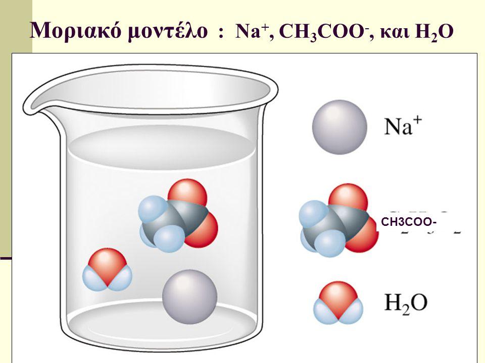 Μοριακό μοντέλο : Na+, CH3COO-, και H2O