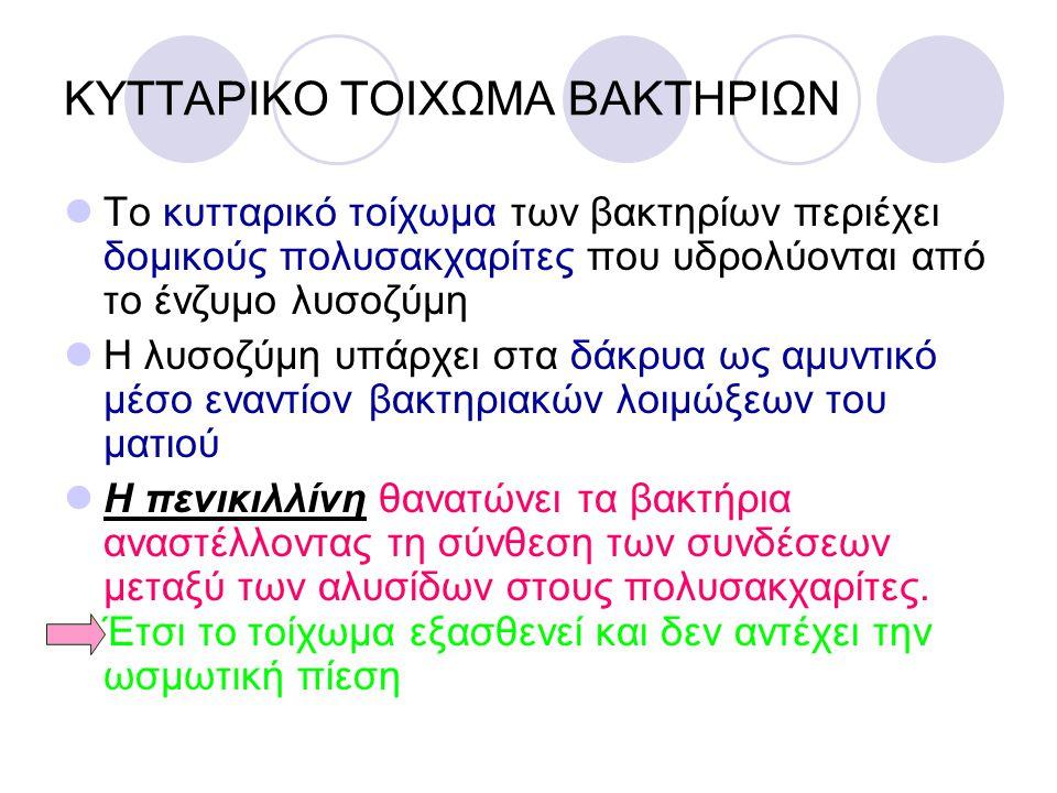 ΚΥΤΤΑΡΙΚΟ ΤΟΙΧΩΜΑ ΒΑΚΤΗΡΙΩΝ
