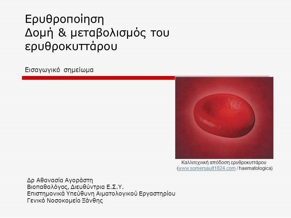 Ερυθροποίηση Δομή & μεταβολισμός του ερυθροκυττάρου Εισαγωγικό σημείωμα
