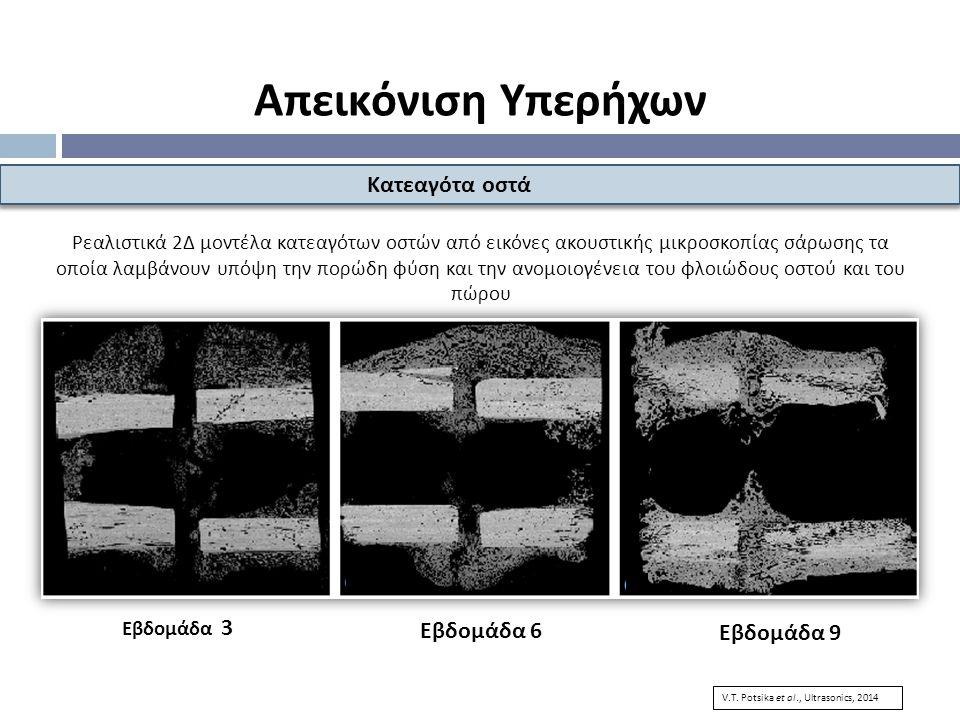 Απεικόνιση Υπερήχων Κατεαγότα οστά Εβδομάδα 6 Εβδομάδα 9