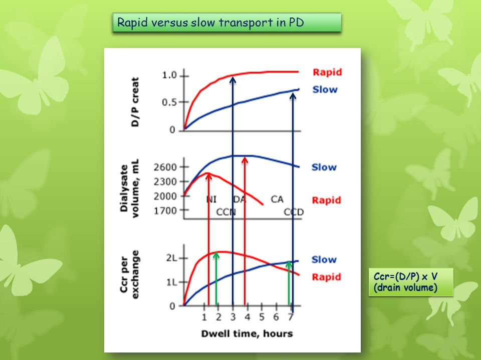 Rapid versus slow transport in PD