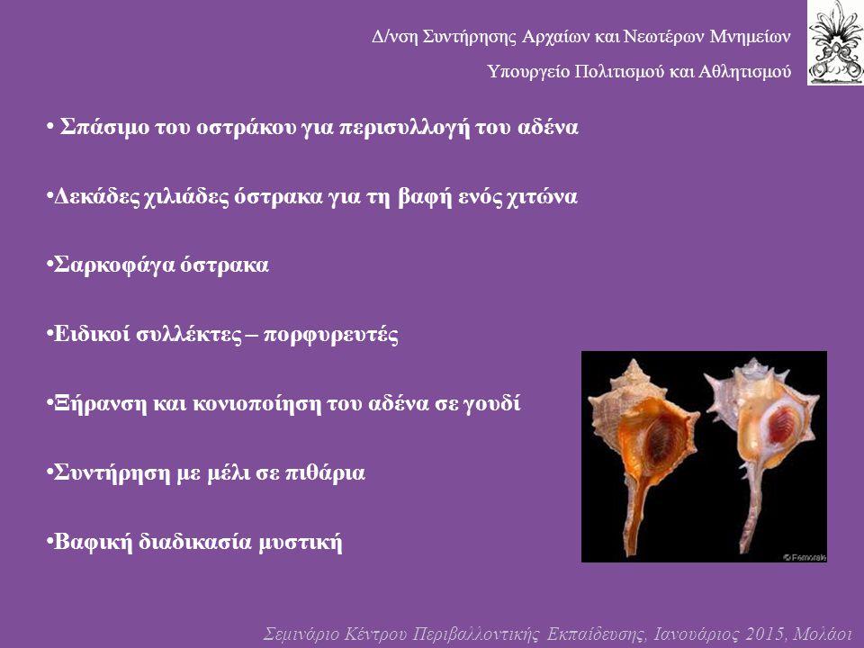 Σπάσιμο του οστράκου για περισυλλογή του αδένα