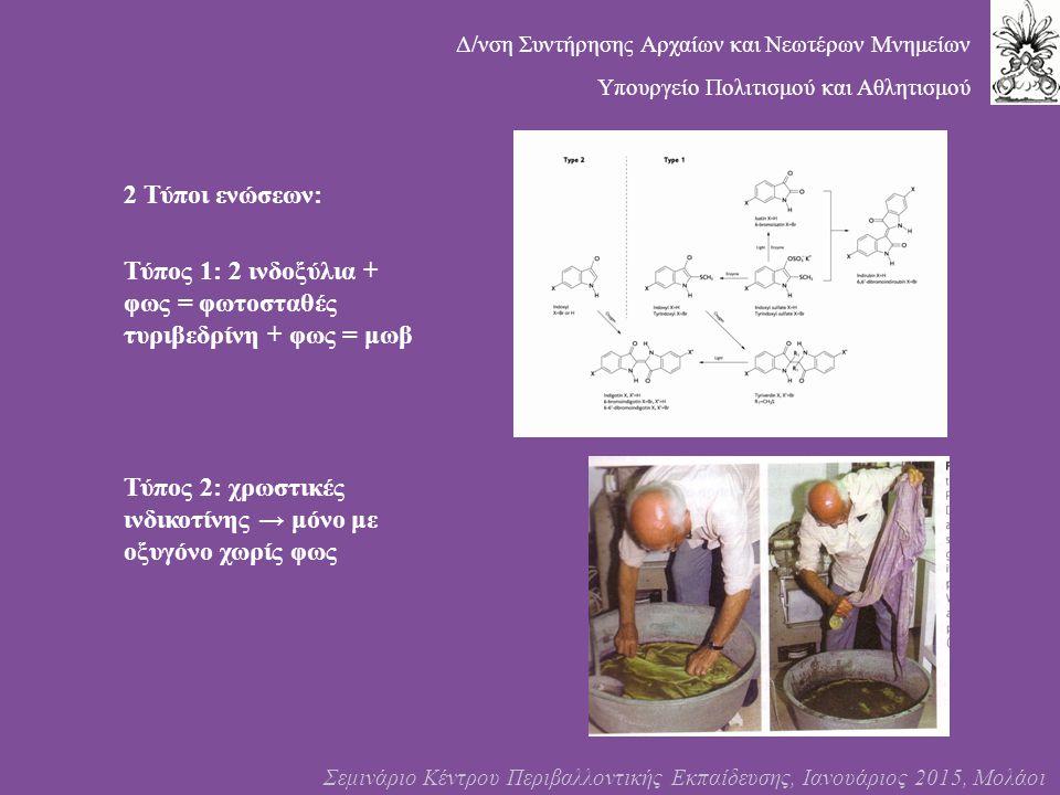 Τύπος 1: 2 ινδοξύλια + φως = φωτοσταθές τυριβεδρίνη + φως = μωβ