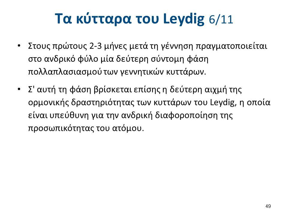 Τα κύτταρα του Leydig 7/11