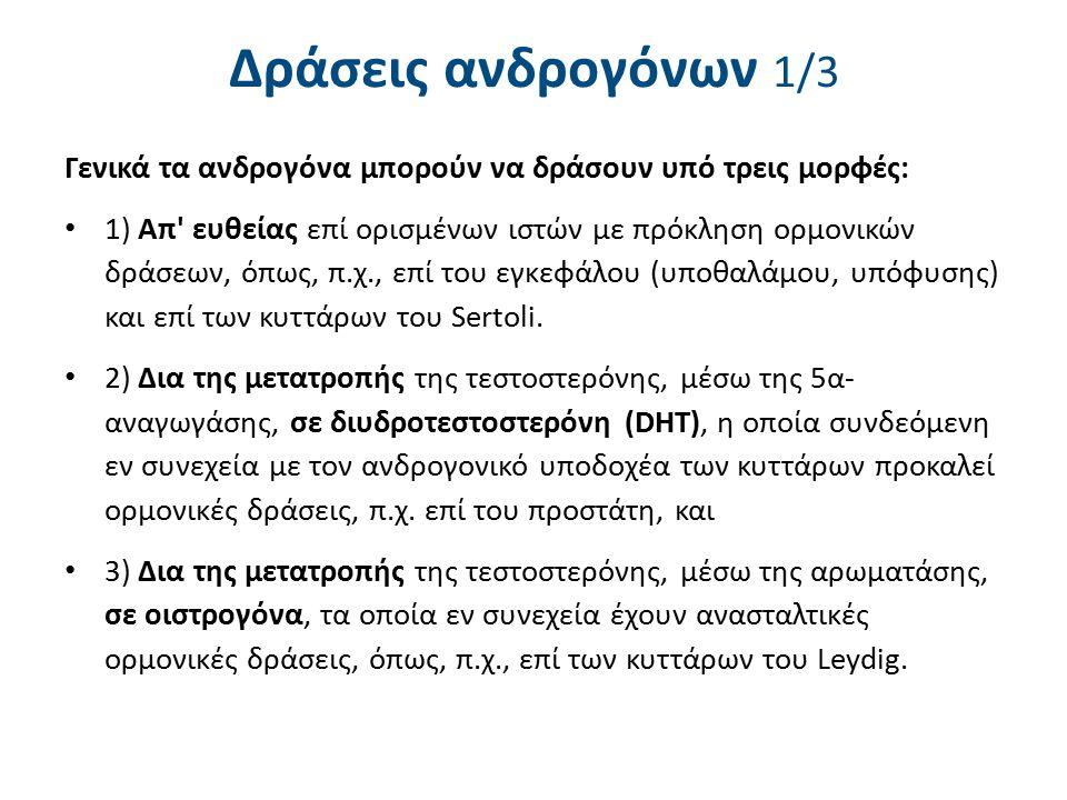 Δράσεις ανδρογόνων 2/3