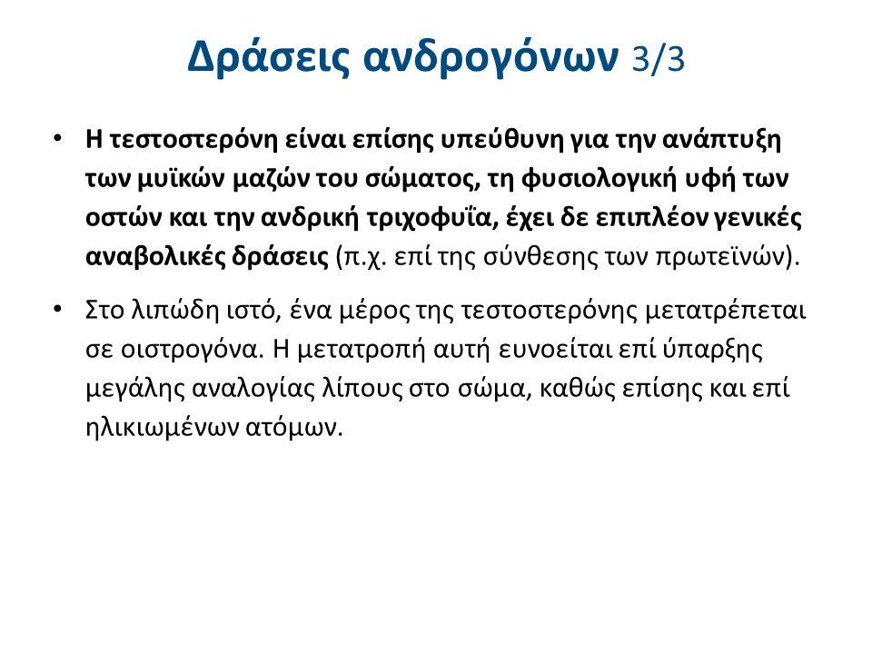 Οιστρογόνα στον άνδρα 1/2