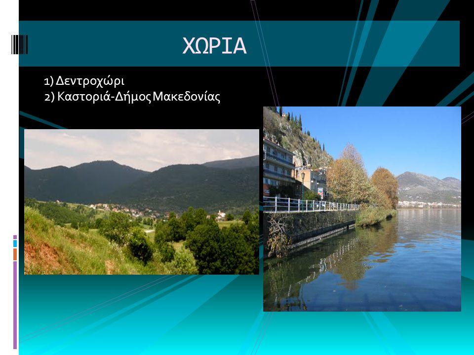 ΧΩΡΙΑ 1) Δεντροχώρι 2) Καστοριά-Δήμος Μακεδονίας