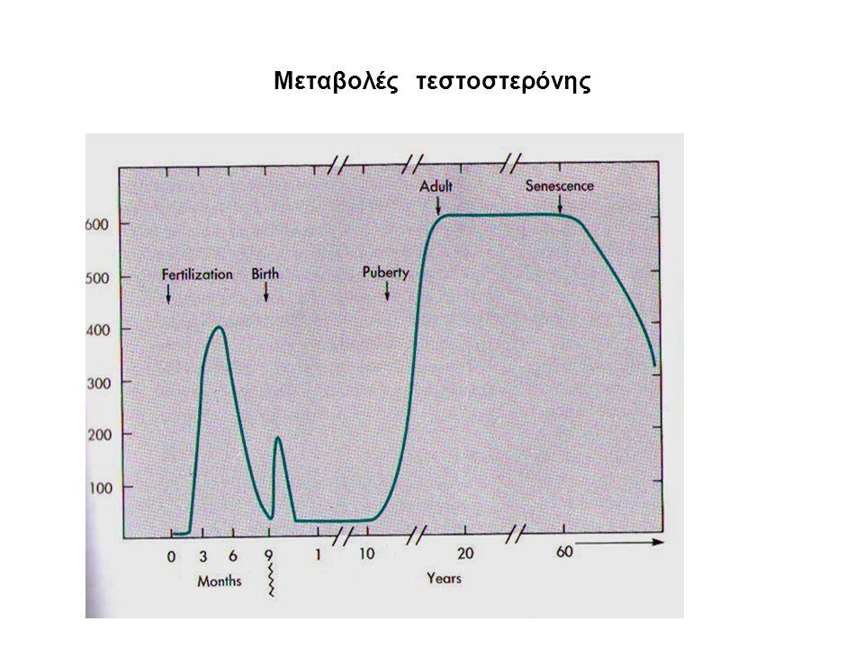 Μεταβολές τεστοστερόνης