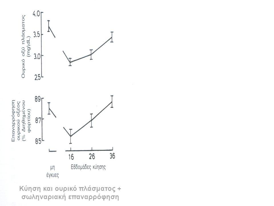 Κύηση και ουρικό πλάσματος + σωληναριακή επαναρρόφηση