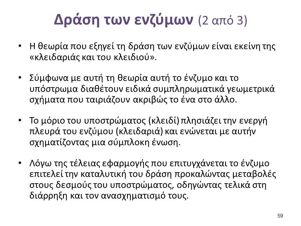Δράση των ενζύμων (3 από 3)