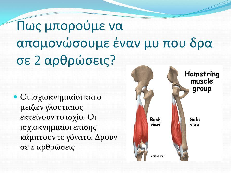 Πως μπορούμε να απομονώσουμε έναν μυ που δρα σε 2 αρθρώσεις