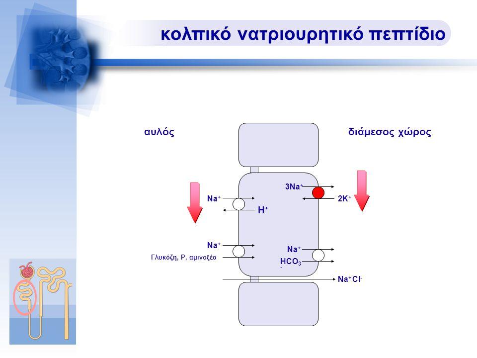 κολπικό νατριουρητικό πεπτίδιο