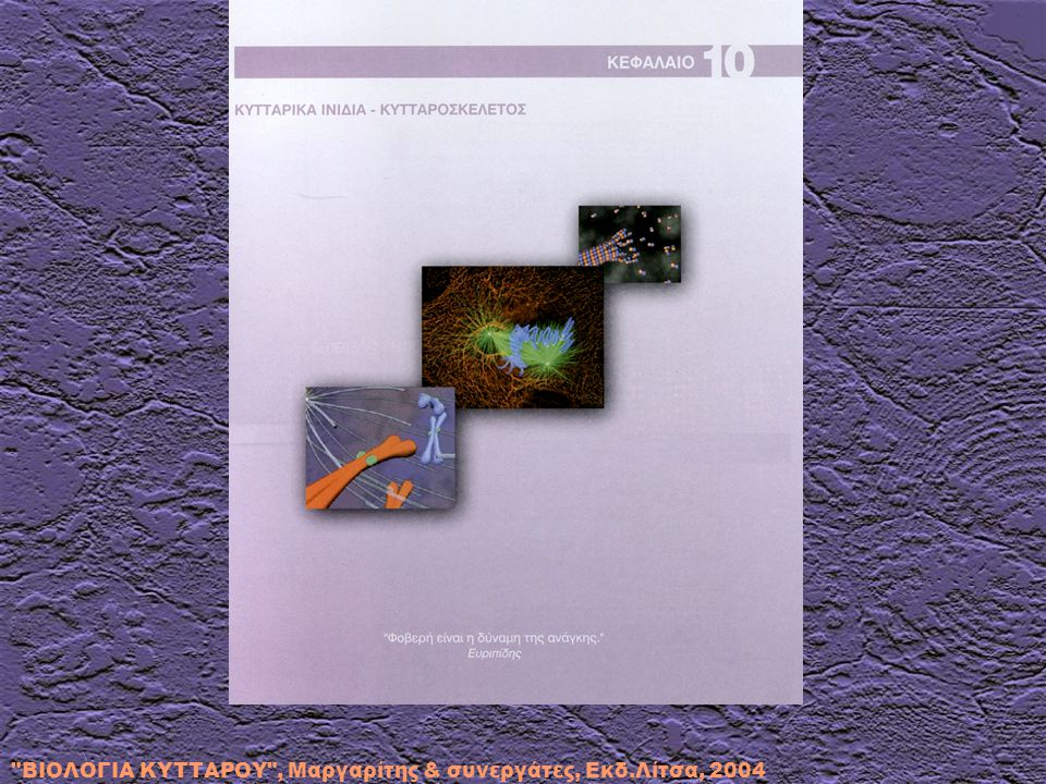 ΒΙΟΛΟΓΙΑ ΚΥΤΤΑΡΟΥ , Μαργαρίτης & συνεργάτες, Εκδ.Λίτσα, 2004