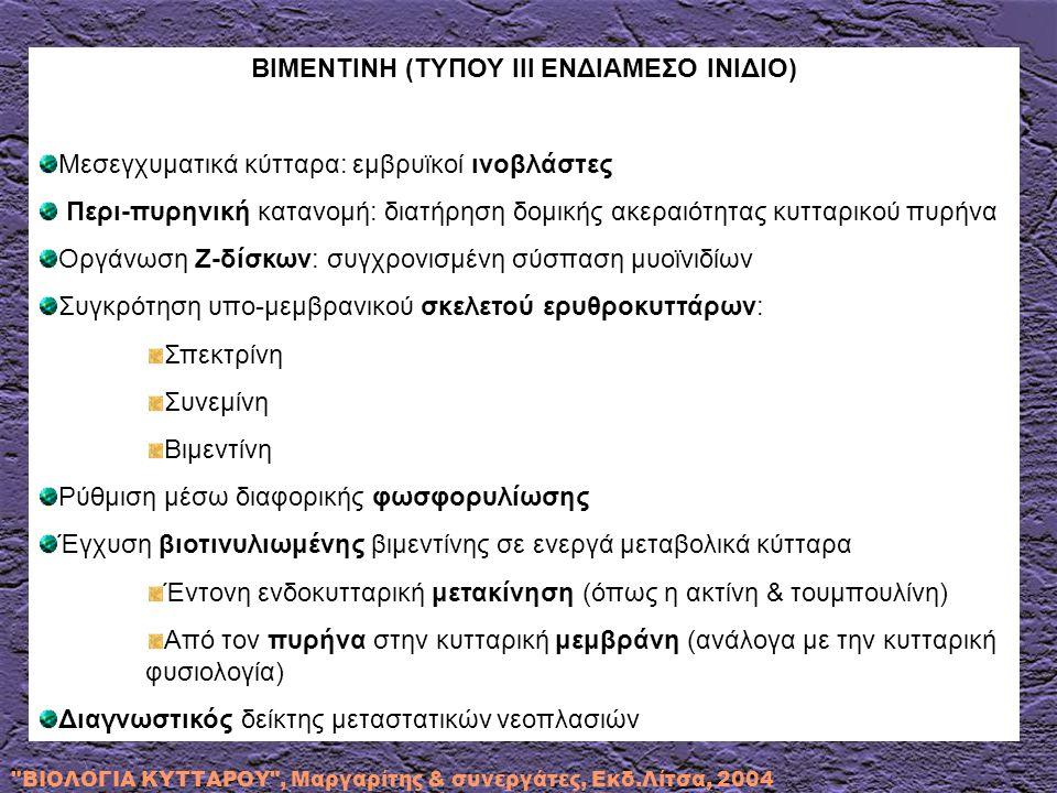 ΒΙΜΕΝΤΙΝΗ (ΤΥΠΟΥ ΙΙΙ ΕΝΔΙΑΜΕΣΟ ΙΝΙΔΙΟ)