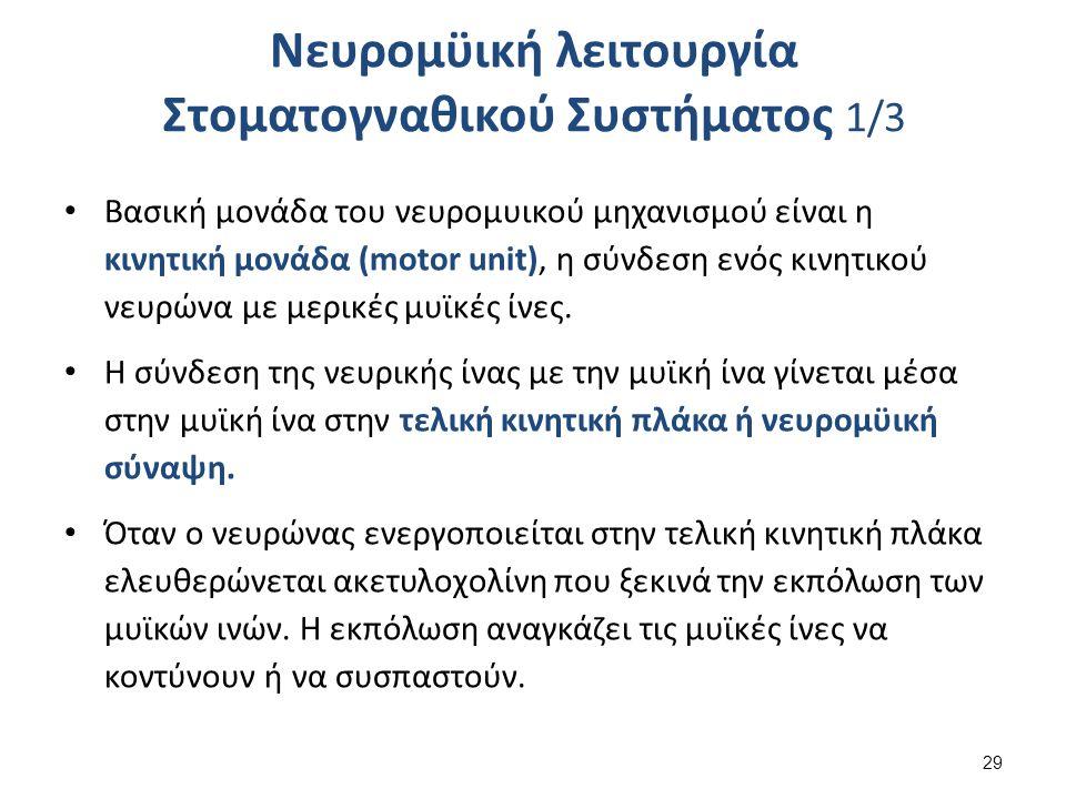 Νευρομϋική λειτουργία Στοματογναθικού Συστήματος 2/3