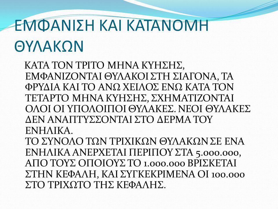 ΕΜΦΑΝΙΣΗ ΚΑΙ ΚΑΤΑΝΟΜΗ ΘΥΛΑΚΩΝ