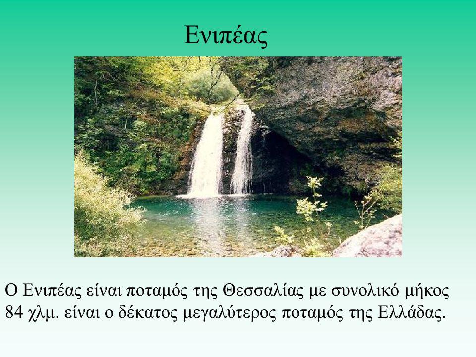 Ενιπέας Ο Ενιπέας είναι ποταμός της Θεσσαλίας με συνολικό μήκος 84 χλμ.