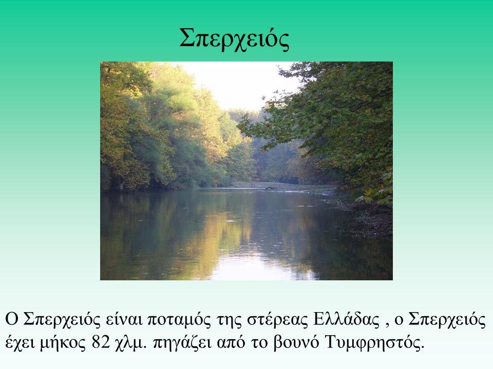 Σπερχειός Ο Σπερχειός είναι ποταμός της στέρεας Ελλάδας , o Σπερχειός έχει μήκος 82 χλμ.
