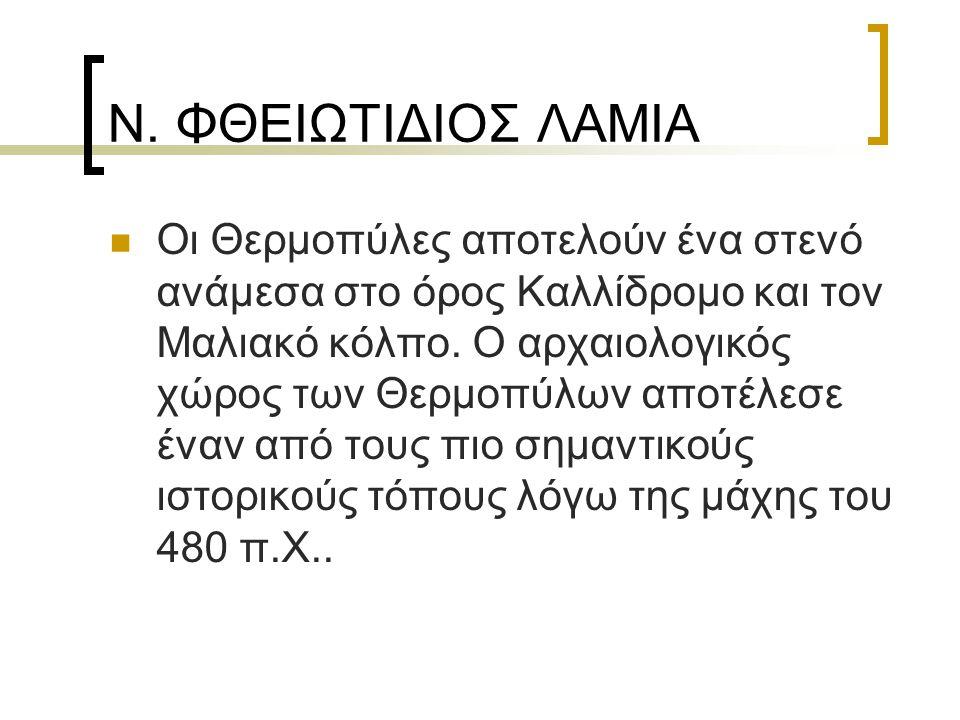 Ν. ΦΘΕΙΩΤΙΔΙΟΣ ΛΑΜΙΑ