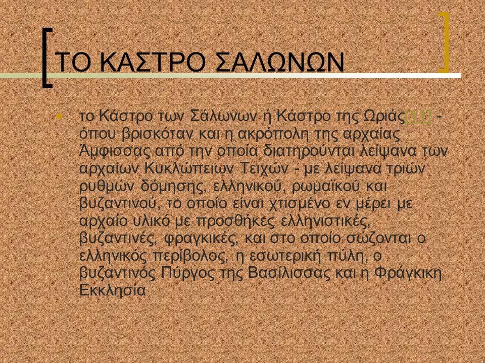 ΤΟ ΚΑΣΤΡΟ ΣΑΛΩΝΩΝ