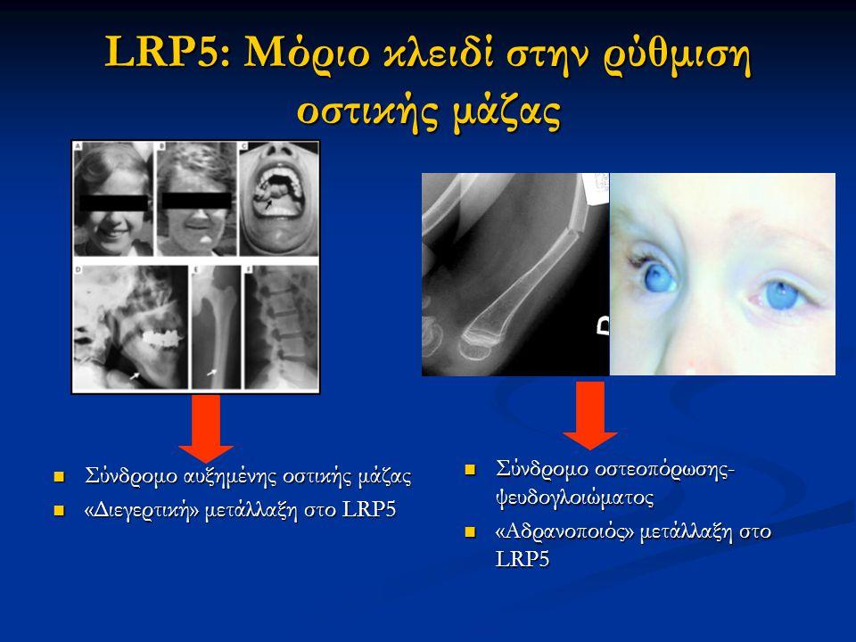 LRP5: Μόριο κλειδί στην ρύθμιση οστικής μάζας