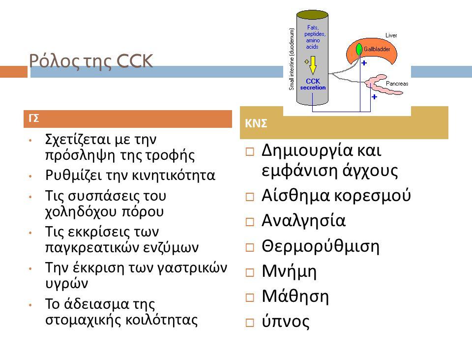Ρόλος της CCK Δημιουργία και εμφάνιση άγχους Αίσθημα κορεσμού