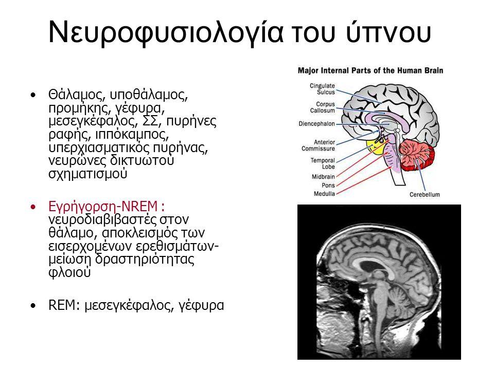 Νευροφυσιολογία του ύπνου