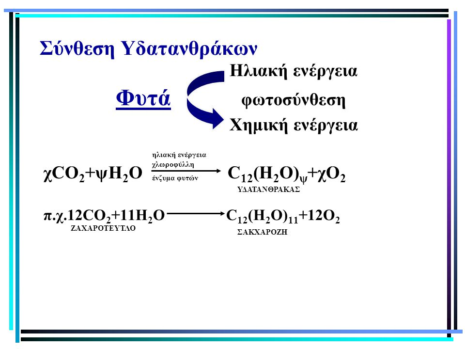 Σύνθεση Υδατανθράκων Ηλιακή ενέργεια Φυτά φωτοσύνθεση Χημική ενέργεια