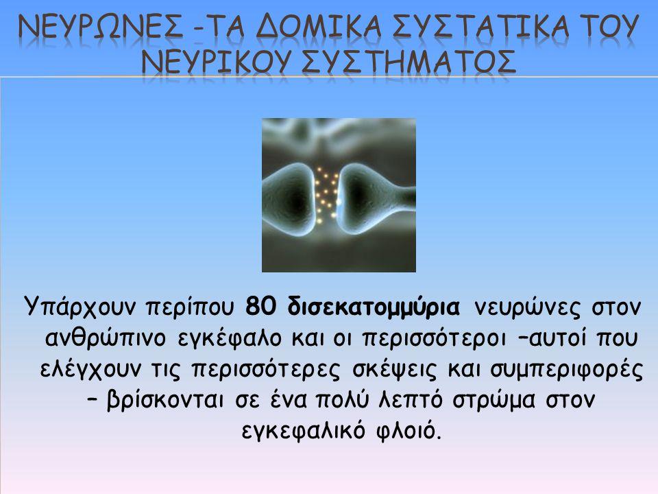 Νευρωνεσ -τα δομικα συστατικα του νευρικου συστηματοσ