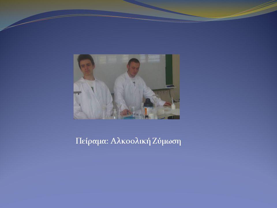 Πείραμα: Αλκοολική Ζύμωση