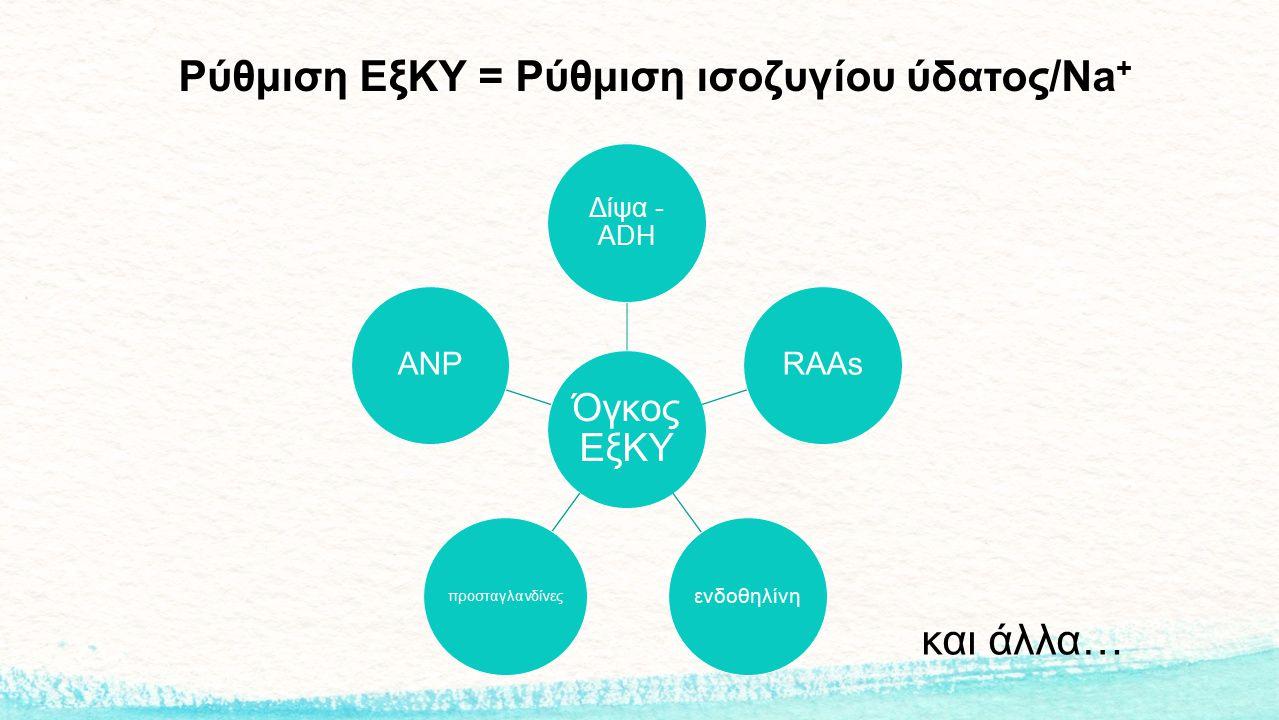 Ρύθμιση ΕξΚΥ = Ρύθμιση ισοζυγίου ύδατος/Na+