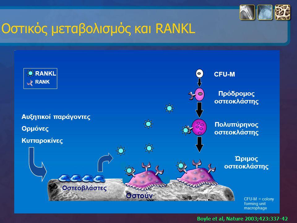 Οστικός μεταβολισμός και RANKL