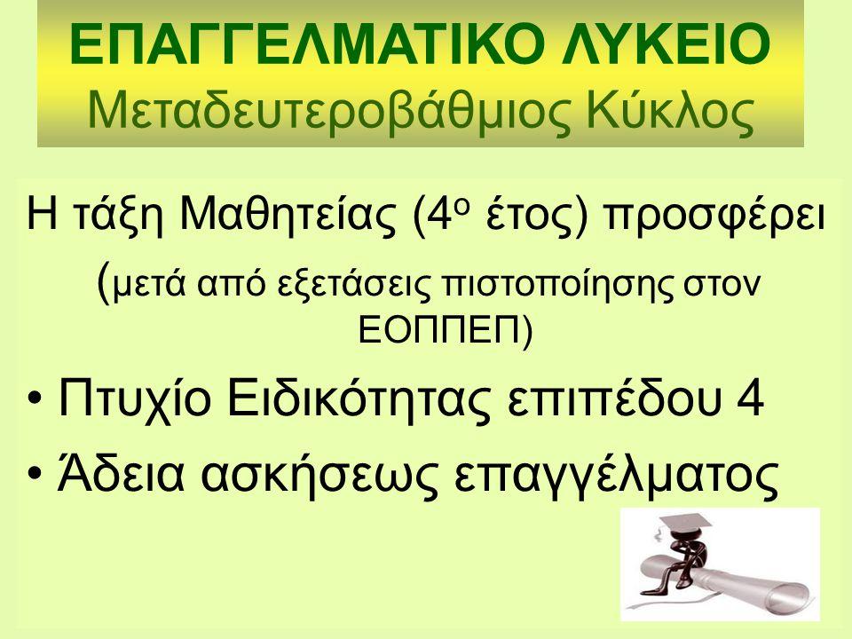 ΕΠΑΓΓΕΛΜΑΤΙΚΟ ΛΥΚΕΙΟ Μεταδευτεροβάθμιος Κύκλος