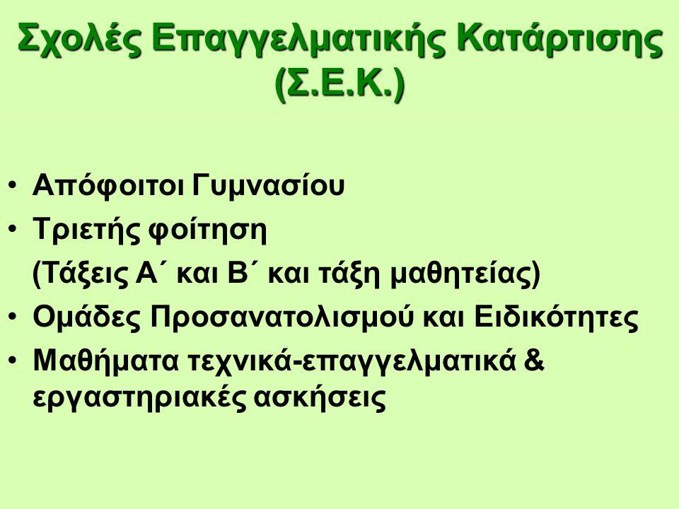 Σχολές Επαγγελματικής Κατάρτισης (Σ.Ε.Κ.)